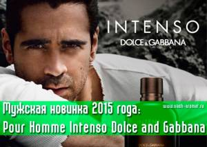 D&G Pour Homme Intenso Dolce and Gabbana