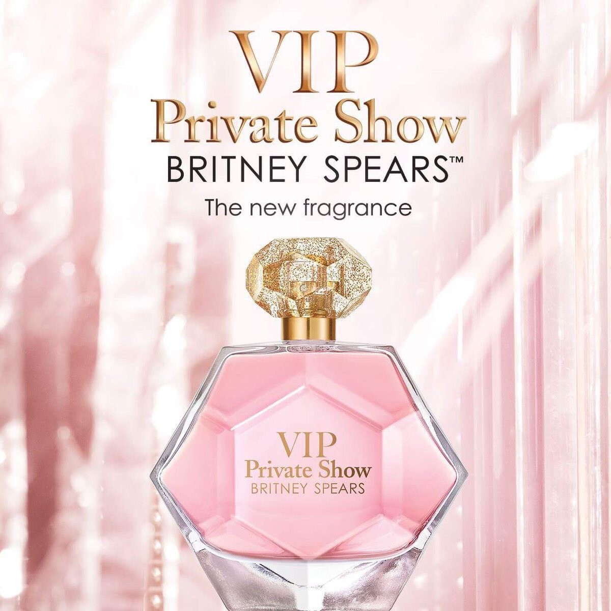 Изображение 3 VIP Private Show Britney Spears