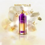 Реклама Orchid Powder Montale
