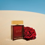 Реклама The One Mysterious Night Dolce and Gabbana