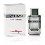 Изображение парфюма Salvatore Ferragamo ATTIMO (men) 100ml edt