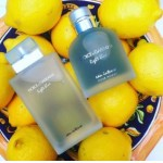 Изображение 2 Light Blue Eau Intense Pour Homme Dolce and Gabbana