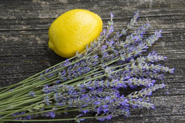 лаванда и лимон