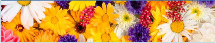 цветочная парфюмерия